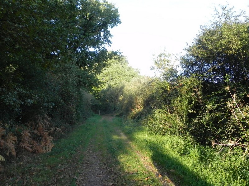 Sentiers2