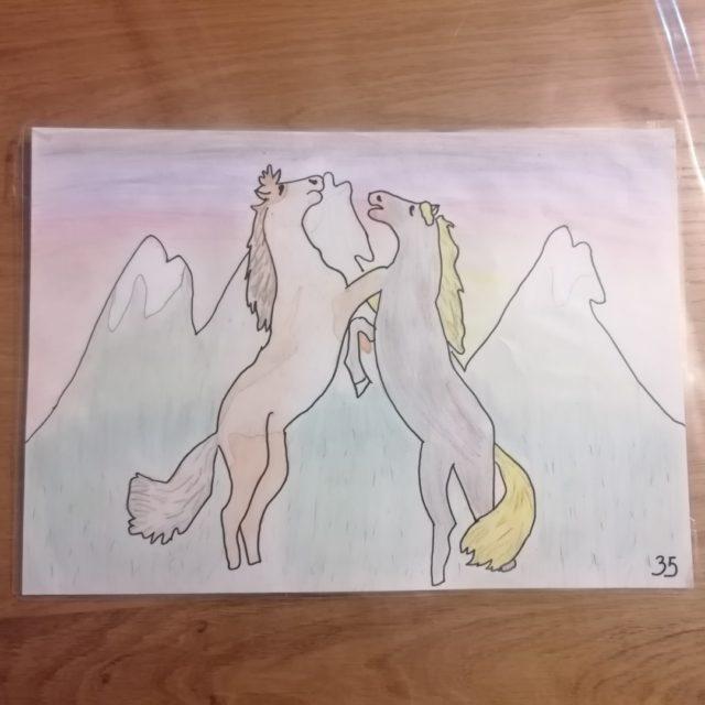 concours de dessin cmj (1)